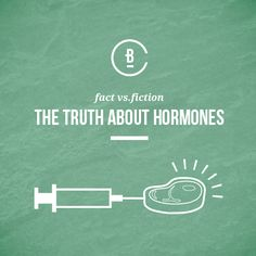 There are many myths surrounding hormones in meat. These are the most common myths about hormones. Common Myths, Believe, Facts, Meat, Truths