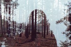 Beautiful double exposure by Oliver Morris #forrest