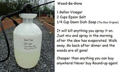 [Organic] Weed Be Gone Natural Weed Killer Ingredients: 1 Gallon Vinegar 2 cups Epson Salts 1/4 cup Dawn dish detergent (Blue original) Mix and spray. Safe in yards with pets, and It really works!