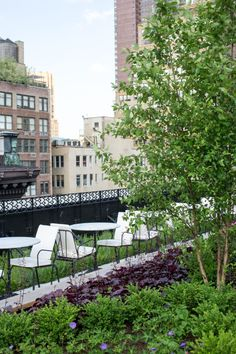 The gorgeous, landscaped Rooftop garden on the floor of The NoMad Hotel in NYC. Photo by Daniel Krieger. Nyc Hotels, New York Hotels, Hotel Costes, Nomad Hotel, Roll Top Bath, Framed Maps, Rooftop Garden, French Interior, Belle Epoque