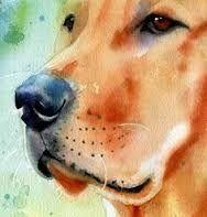 Resultado de imagem para watercolor paintings of dogs