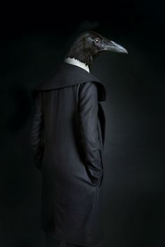 Animals Dressed In Clothes That Fit Them Like a Second Skin | DeMilked - www.miguelvallinas.com