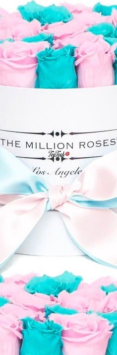 ❈Téa Tosh❈THE.MILLION.ROSES #TheMillionRoses #teatosh Life Is Beautiful, Beautiful Flowers, Box Roses, I Party, Heavenly, Color Mixing, Bouquets, Classy Lady, Tea