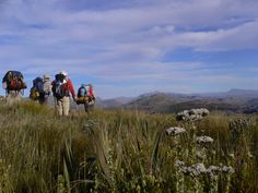 Starting in the Northern Cederberg and stretching to the Outeniqua mountains lies a trail called The Rim of Africa. Sight & Sound, Stretching, Trail, Africa, Mountains, Nature, Naturaleza, Nature Illustration, Outdoors