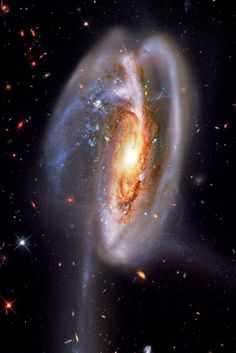 The Tadpole Galaxy is a disrupted barred spiral galaxy located 400 mly from Earth toward the northern constellation Draco. It's most dramatic features are a trail of stars about lys long massive star clusters. Galaxy Cross, Spiral Galaxy, Cosmos, Space Photos, Space Images, Star Cluster, Space And Astronomy, Hubble Space Telescope, Galaxy Space