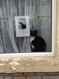Vous cherchez quelqu'un ?