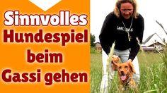 ►► Hundespiele ✔ Sinnvolle Hunde Spiele beim Gassi gehen - Stephanie Sal...