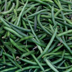 Pile on the green beans. #UncontainedLife #FarmersMarket #FarmToTable #EatLocal #BuyLocal #SmallBusiness #HealthyFood
