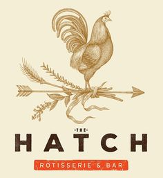 The Hatch Logo Illustrated by Steven Noble