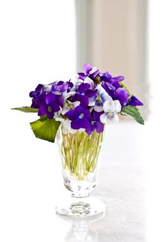 My Daddy used to go out into the forest on Sunday mornings in Spring and pick a violet bouquet for my Mom.