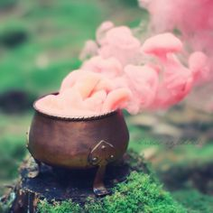 Image about pink in ღ Pagan - Magic - Wicca - spells ღ by ❥ Bambi Magia Elemental, Chibi Kawaii, Pink Smoke, Colored Smoke, Mystique, Witch Aesthetic, Believe In Magic, Cauldron, Conte