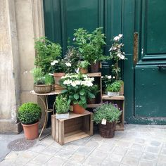 Gardening In The City Best Paris plant and flower shops La boutique des Saints Peres Garden Shop, Garden Pots, Cyprus Gardens, Small Garden Corner, Garden Center Displays, French Flowers, Paris, Garden Signs, Flower Farm