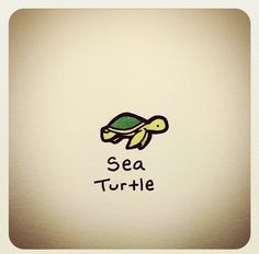 That's just a turtle the others are tortoises Cute Turtle Drawings, Turtle Sketch, Animal Drawings, Tiny Turtle, Turtle Love, Cute Turtles, Baby Turtles, Sea Turtles, Kawaii Drawings