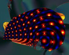 Luminescent algae eating sea slug