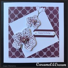 Climbing Orchid - Stampin Up