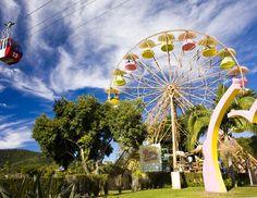 roda gigante (Foto: Divulgação) Beto Carrero World, Ferris Wheel, Disney, Fair Grounds, Travel, Parks, Pictures, Oktoberfest, Viajes