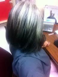 Hair color silver highlights going gray 66 ideas Pelo Color Ceniza, Black Cherry Hair, Hair Highlights And Lowlights, White Highlights, Natural Highlights, Grey Hair Inspiration, Gray Hair Growing Out, Transition To Gray Hair, Silver Grey Hair