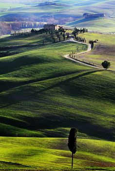 Tuscany the absolute most peaceful place...slow lifestyle, slow food, slow down!