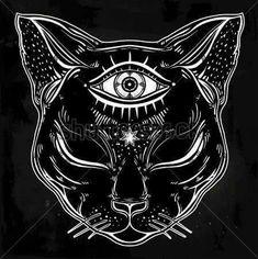 Cat visionario