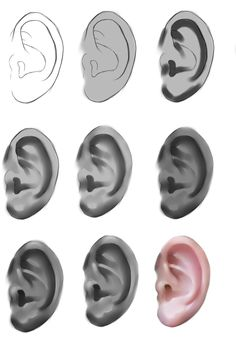 Ear tutorial by ryky.deviantart.com on @deviantART ✤ || CHARACTER DESIGN REFERENCES | キャラクターデザイン • Find more at https://www.facebook.com/CharacterDesignReferences if you're looking for: #lineart #art #character #design #illustration #expressions #best #animation #drawing #archive #library #reference #anatomy #traditional #sketch #development #artist #pose #settei #gestures #how #to #tutorial #comics #conceptart #modelsheet #cartoon || ✤
