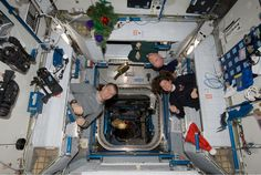 Check out [NEWS] Homesteading In Space at http://pioneersettler.com/homesteading-in-space-news/