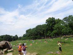 Central Park, New York, honeymoon, travel, viaggi