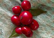 1940s Artificial Apples Millinery Hat Trim Vintage Fruit Lacqured Cluster
