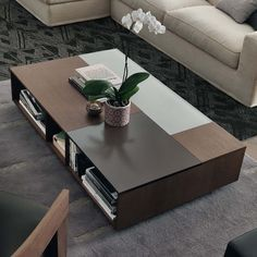 Prive Collection@@Rectangular coffee table with open compartments. Top with frosted lacquered glass inserts. Anthracite wooden legs.@@Finishing: therm oak, matt