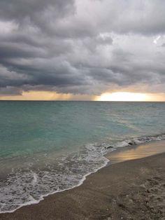 Turtle Storm - Sarasota, Florida by Lynn Wood
