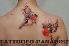 Watercolor birds tattoo