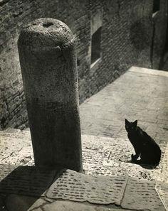 the night picture collector - my-secret-eye:   Giovanni Righi, Nel Vicolo, 1963