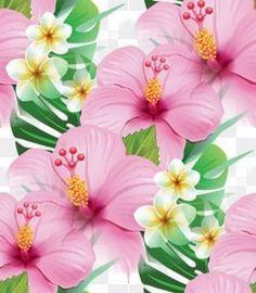 Květ pozadí 64 Plants, Plant, Planets