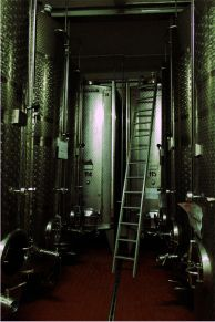 Some of our stainless steel tanks. Picture taken by Conny Eisfeld from #Lomoherz.