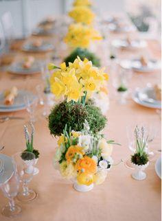 Happy Daffodils!
