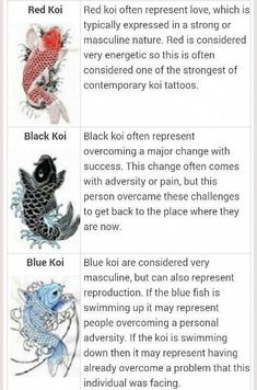 "Koi fish are the domesticated variety of common carp. Actually, the word ""koi"" comes from the Japanese word that means ""carp"". Outdoor koi ponds are relaxing. Irezumi Tattoos, Geisha Tattoos, Japanese Tattoo Meanings, Japanese Tattoo Women, Japanese Tattoo Designs, Japanese Tattoo Sleeves, Koi Tattoo Design, Pez Koi Tattoo, Koy Fish Tattoo"
