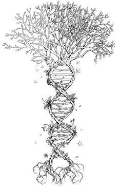 Tree DNA Tattoo - tree of life Dna Tattoo, Tattoo Life, Body Art Tattoos, New Tattoos, Biology Tattoo, Roots Tattoo, Tatoos, Tattoo Wings, Brain Tattoo