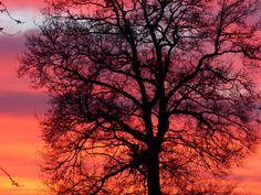 De avondzon. ©Hooggevoelig heel gewoon, 2014. Kijk ook op www.hooggevoeligheelgewoon.nl en www.facebook.nl/hooggevoeligheelgewoon