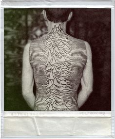dedication. [unknown pleasures]  reminds me of the song! rocky mountain spine