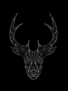 Wild animals by Markela Bgiala, via Behance