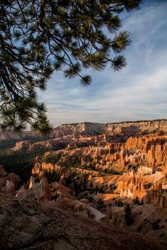 Sunrise Point, Bryce Canyon National Park, Utah. Photo by Robert B Decker.