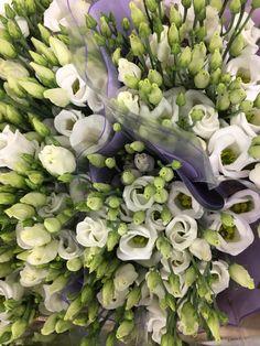 The 167 best white fresh flowers images on pinterest in 2018 lisianthus white fresh flowers mightylinksfo