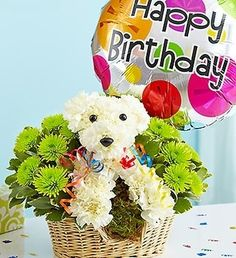 Let This Little Dog Made Out Of Flowers Wish Someone A Happy Birthday