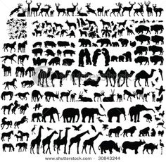 Two Hundred Animal Silhouettes Vector Stock Vector (Royalty Free) 30843244 Nativity Silhouette, Animal Silhouette, Silhouette Vector, South African Design, Drawing Clipart, Horse Pattern, Dog Tattoos, Stencil Designs, Animal Drawings
