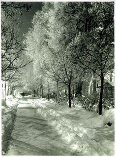 Nicolae Ionescu (1903 - 1975) Fotograf al Bucurestilor – altmarius 1975, Vintage Photos, Snow, Outdoor, Outdoors, Outdoor Games, Vintage Photography, Outdoor Living, Vintage Typography