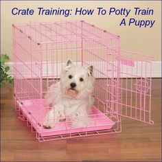 Potty training a puppy can be difficult and time consuming, especially if you don't know how or where to start. With the crate training method, your puppy will not only be potty trained, but he can learn a number of other good habits as well. Keep reading to learn how to crate train your puppy.