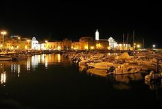 Trani by night