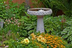 bird gardens   Sandra Foster › Portfolio › Bird Bath Garden Scene