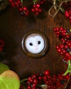 久々のブローチ! 黒いおめめがかわいい、メンフクロウちゃんです♡  周りの丸い木の枠は、木の樹洞をイメージしています(o^^o) この樹洞ブローチはシリーズ化予定! 今度はどんなこに会いに行こうかなぁ^ ^  #hapipupetto  #handmade  #owl  #bird  #wool  #woolfelt  #feltingneedle  #needlefelt  #needlefelted  #needlefelting  #wood  #羊毛フェルト  #ハンドメイド  #鳥  #とり #ふくろう  #フクロウ  #梟  #メンフクロウ  #手芸  #ブローチ  #ハンドメイドブローチ