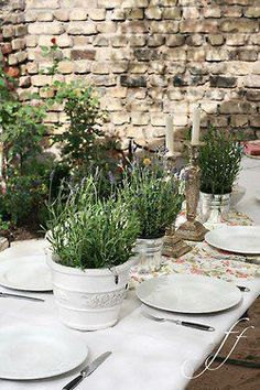 Potted herb centerpieces - wedding