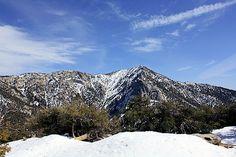 Mt. San Jacinto State Park, Idyllwild, CA